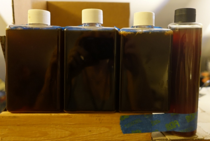 This photo shows my experimental Luminous Red PNSB Lamp, turned off in a normally-lit room (about 300 lux light intensity). Notice the dark opacity of the liquid in the bottles, causing the liquid in them to appear to be very dark red. When the lamp is turned on, the bottles of PNSB culture are backlit by a flat white LED panel.
