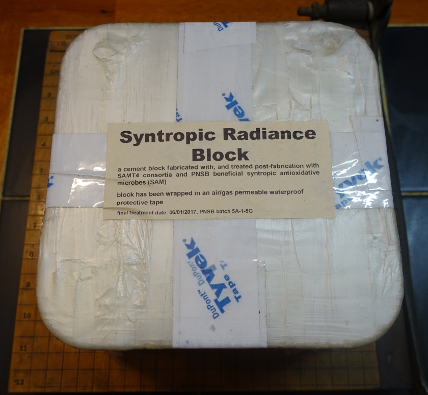 This photo shows the Syntropic Radiance Block.